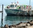 Agrion, au port d'Evian-les-bains, fait la navette pour la visite du Pré Curieux