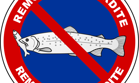 Evian : panneau de prévention de la remontée des poissons